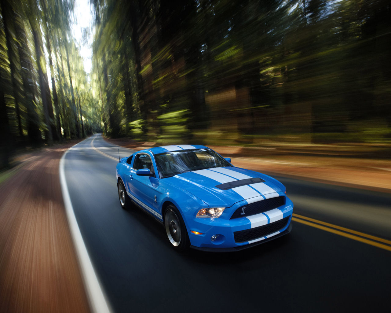 ford mustang shelby gt convertible   wallpaper desktop background picture