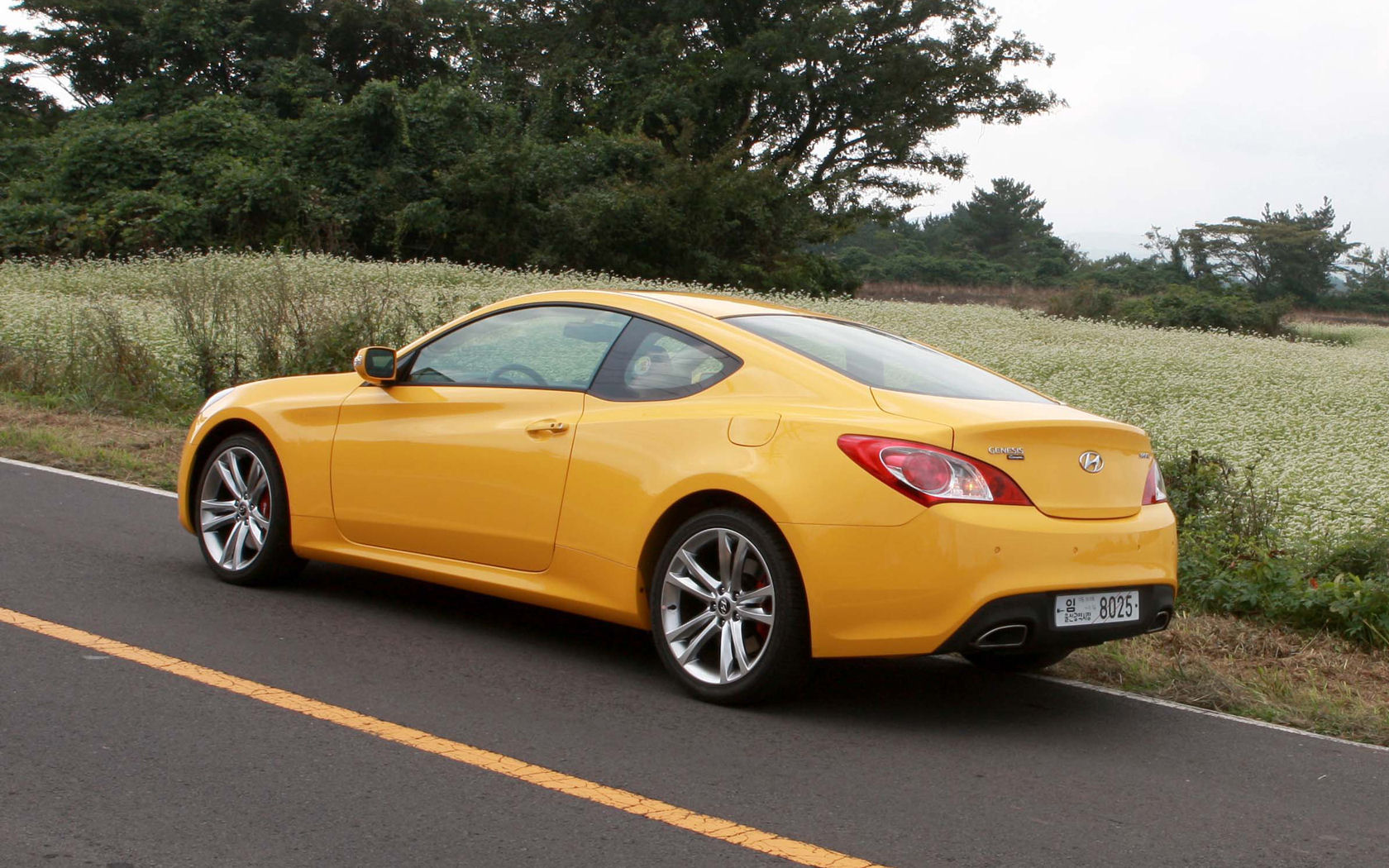 Hyundai Genesis Coupe 2 0 Turbo 3 8 V6 4 6 V8 Free Widescreen
