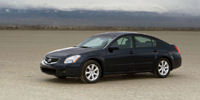 2007 Nissan Maxima Pictures